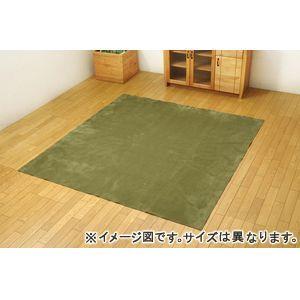 ●ポイント4.5倍●ラグ カーペット 4.5畳 洗える 無地 『イーズ』 グリーン 約220×320cm 裏:すべりにくい加工 (ホットカーペット対応)【代引不可】 [13]