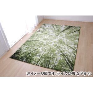 ●ポイント4.5倍●トルコ製 ウィルトン織カーペット『ガイア RUG』約200×250cm【代引不可】 [13]