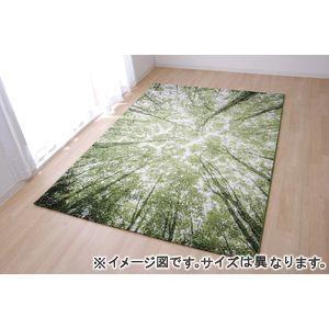 ●ポイント6.5倍●トルコ製 ウィルトン織カーペット『ガイア RUG』約160×230cm【代引不可】 [13]