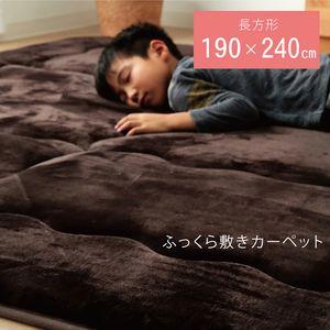 ●ポイント5.5倍●ラグ マット こたつ敷き布団 長方形 ラグ ブラウン 約190×240cm【代引不可】 [13]