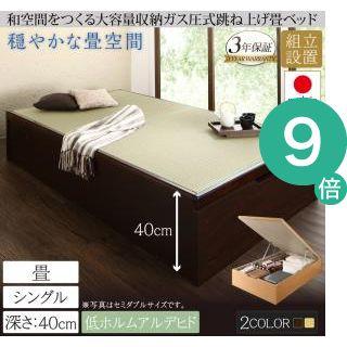 ●ポイント9倍●組立設置 くつろぎの和空間をつくる日本製大容量収納ガス圧式跳ね上げ畳ベッド 涼香 リョウカ シングル 深さラージ[4D][00]