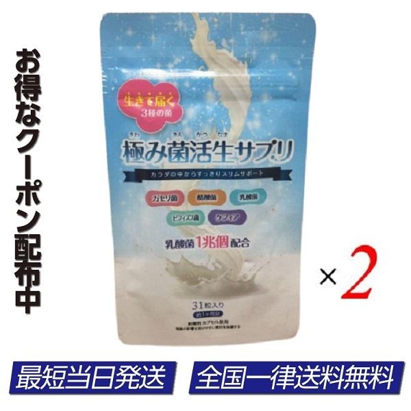 極み菌活生サプリ 売り込み 2袋セット 31粒 ダイエットサプリ 正規品 ビフィズス菌 乳酸菌