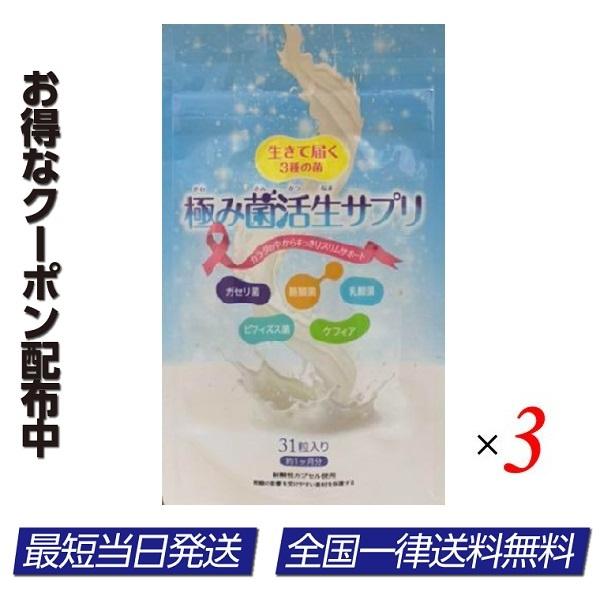 極み菌活生サプリ 期間限定特価品 3袋セット 31粒 ビフィズス菌 乳酸菌 新作 大人気 ダイエットサプリ