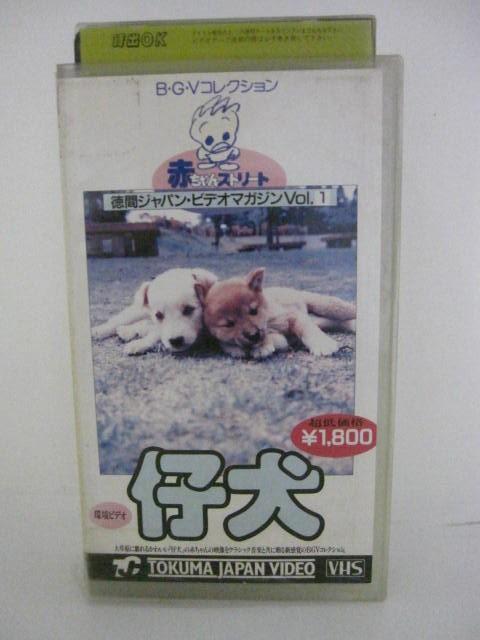 H5 09225 新色追加 マーケット 中古 赤ちゃんストリートVol.1仔犬 VHSビデオ