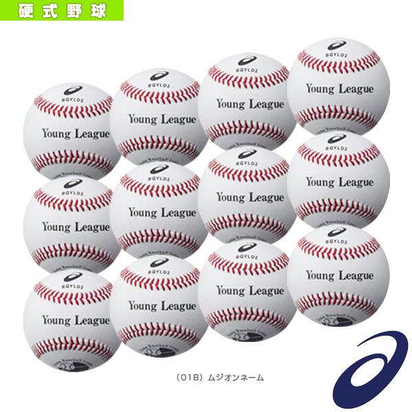 【ネーム入れ】『1ダース・12球入』硬式野球ボール/ヤングリーグ試合用(BQYLD2)『野球 ボール アシックス』