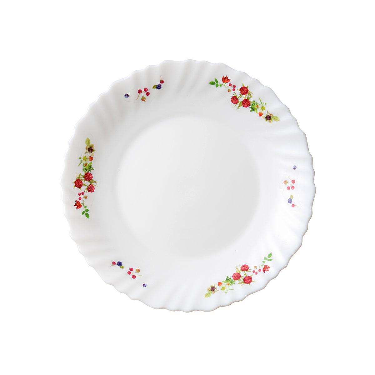 Seasonal Wrap入荷 家族の明るい食卓に-ファミエット食卓を彩る素敵なメイド イン 未使用品 フランス明るく爽やかな フランボワーズ iwaki B11369-BR ファミエット 小皿 径19cm