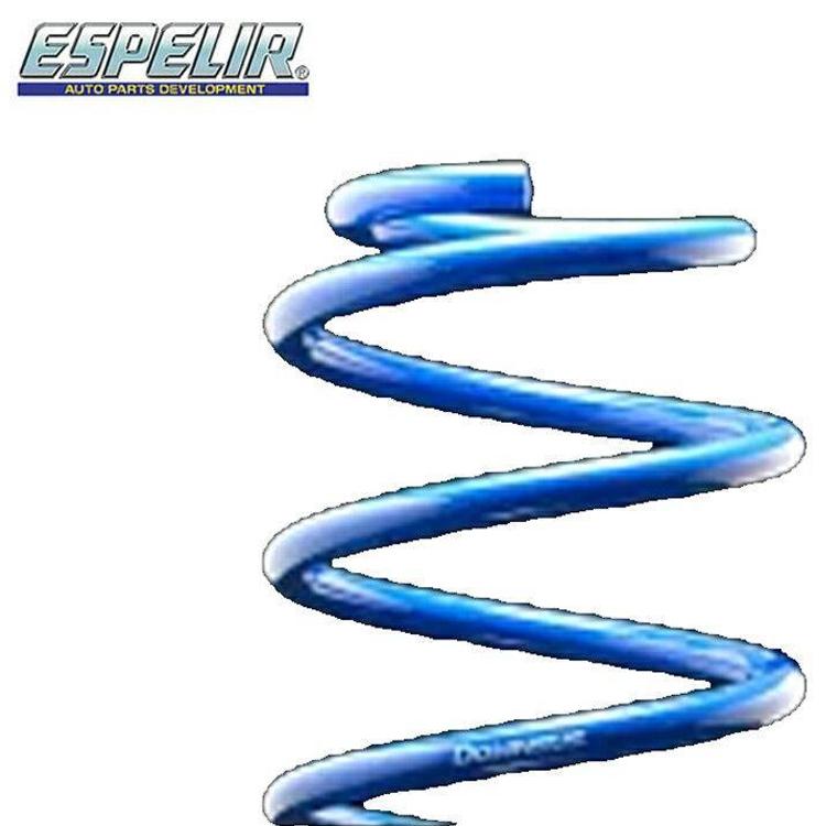 エスペリア デイズ B21W ライダー スプリング ダウンサス セット 1台分 ESN-3202 ダウンサス DOWNSUS ESPELIR