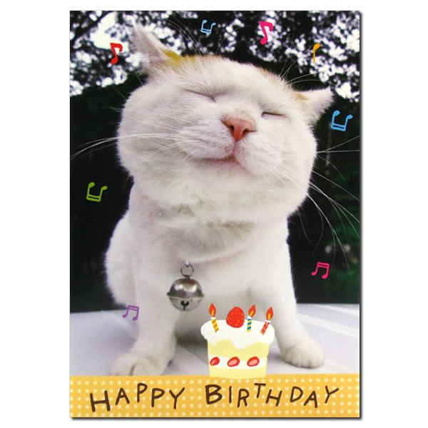 With A Melody Is Birthday Card For Very Reasonable Price To Open The And Enters HAPPYBIRTHDAY Song In Side Have Wonderful