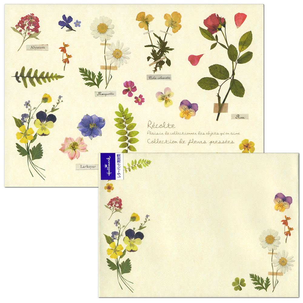 Ashiya hori mansho do rakuten global market 12 pieces of 12 pieces of pressed flower eep 723 873eee 723 910 12 letter paper 2 patterns envelope 2 pattern four pieces hallmark mightylinksfo