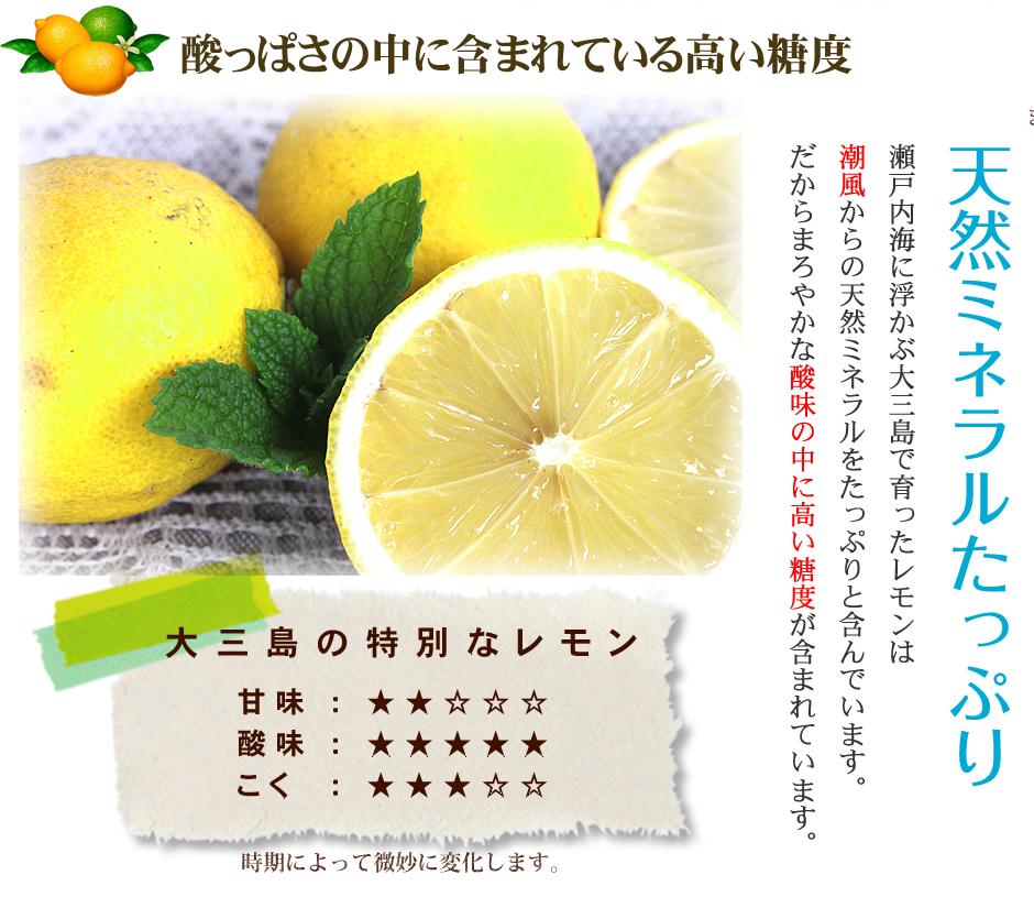 島レモン>見た目きれい