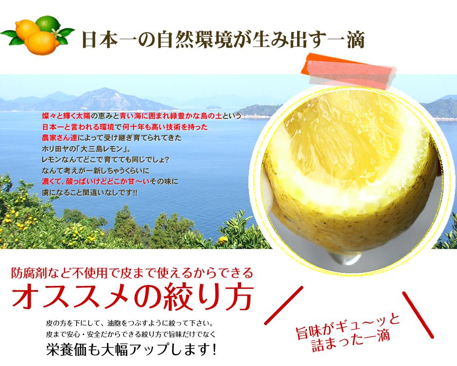 島レモン>農薬不使用レモン>家庭用 訳あり