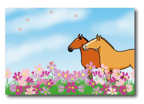 馬好きにはたまらない可愛くって リアルで アウトレット とっても親しみのあるイラストで評判のおがわじゅりさんのポストカード 国内正規総代理店アイテム 馬のイラストレーターおがわじゅりポストカード~馬とコスモス~ メール便 可 ネコポス