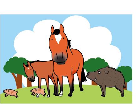 おしゃれ 馬好きにはたまらない可愛くって リアルで とっても親しみのあるイラストで評判のおがわじゅりさんのポストカード 馬のイラストレーターおがわじゅりポストカード~馬と猪 可 メール便 ウマイノ関係~ ネコポス レビューを書けば送料当店負担