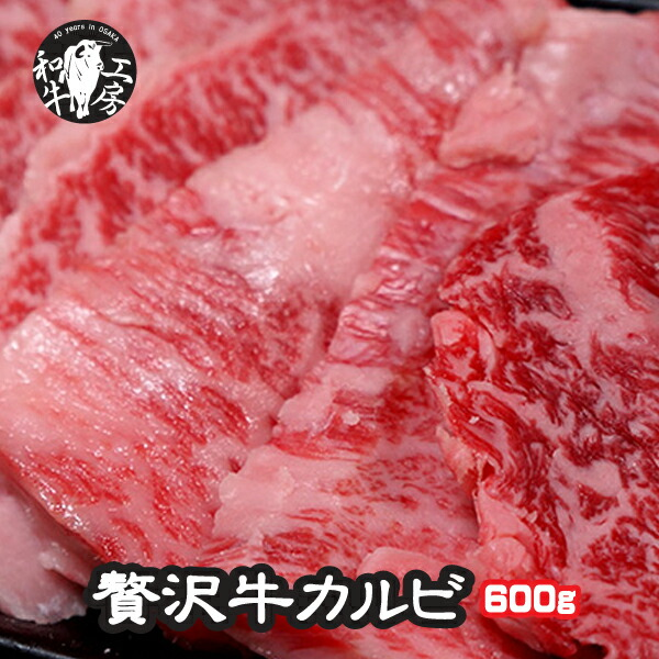 小分けで便利 注文後の変更キャンセル返品 ブランド 宮崎牛 がたっぷり 600g 焼肉 店の量で約3~4人前 バーベキューセット FS_708-7 FD あす楽 黒毛和牛 カルビ A4 A5ランク限定 600g 200g×3 特上 国産 和牛 牛カルビ 肉 やきにく ブランド牛 牛肉 焼き肉 お歳暮 牛バラ 格安 かるび 出産祝い セット BBQ かいのみ プレゼント フランク 内祝い 友バラ バラ バーベキュー ギフト