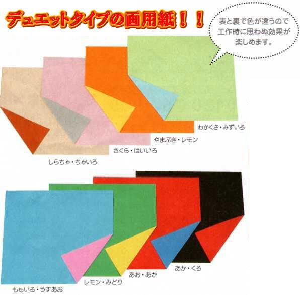 表と裏の色が違うデュエットタイプ 世界の人気ブランド 両面画用紙 供え ニューカラーWクラフトR 86003826 製作素材 8切10枚