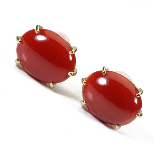 赤珊瑚 ピアス オーバル 無染色 K18 イエローゴールド SANSUI宝石サンゴ 天然 本さんご コーラル