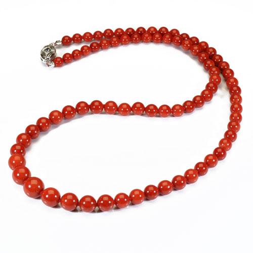 地中海紅珊瑚 (胡渡・サルジ)ネックレス K14WG 無染色 SANSUI宝石サンゴ 天然 本さんご コーラル