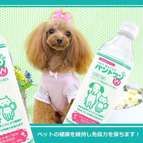犬・猫用 病中病後 栄養補助 アトピー サプリメント お水のサプリPETWATERパントワンW(小型犬・猫用)48本セット 【送料無料】