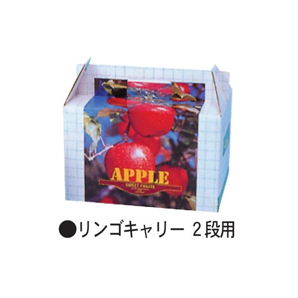 信和 りんご用紙箱 リンゴキャリー2段用 315×205×280mm 1ケース50枚入り