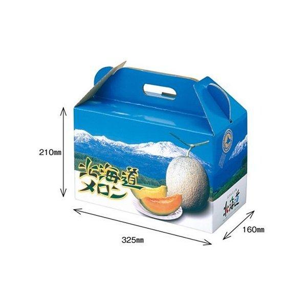 メロンの箱 メロン用 化粧箱 ダンボール箱 人気上昇中 屋号必須 オリカ 北海道メロンD2 330×165×295mm 祝開店大放出セール開催中 2ヶ入 1セット10枚入り メロン箱