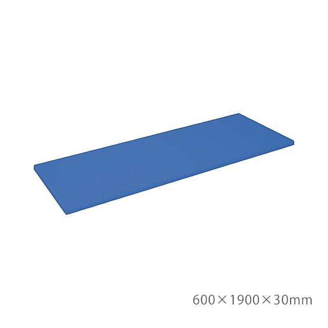 【送料無料】ナビス エックスマット 600×1900×30mm ライトブル- 8-5524-02