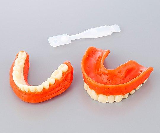 ご遺体に装着して自然な表情を取り戻す事ができます 《あす楽対応》ナビス 尊体用義歯エンゼルデンチャー 8-4676-01 上下1セット入 尊体用義歯 気質アップ 医療 介護 装具 低価格化 医療材料 看護 尊体処置