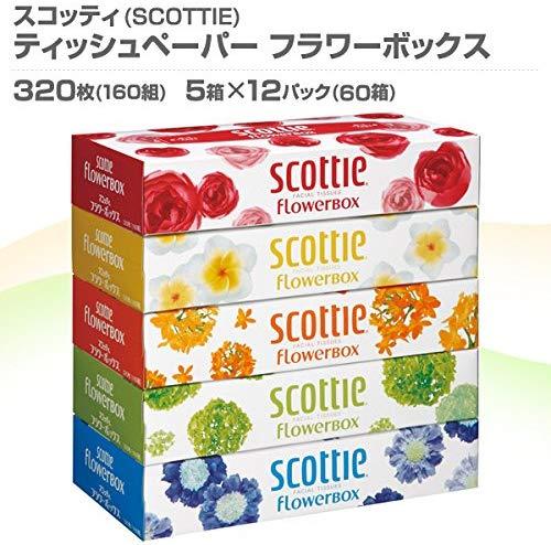 スコッティ ティシュー フラワーボックス(320枚(160組) 5箱パック)12セット