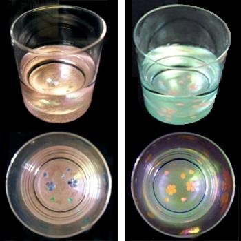 天野漆器:ロックグラス 桜(貝入) ピンク/ブルー ※色をお選びください。