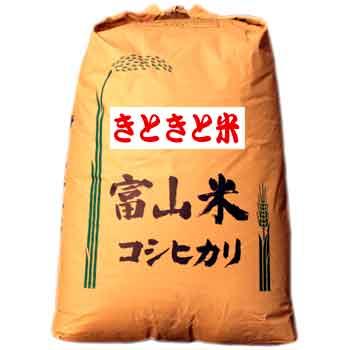 イノベーションエース:富山県産コシヒカリ「平成30年産きときと米(玄米30kg)」