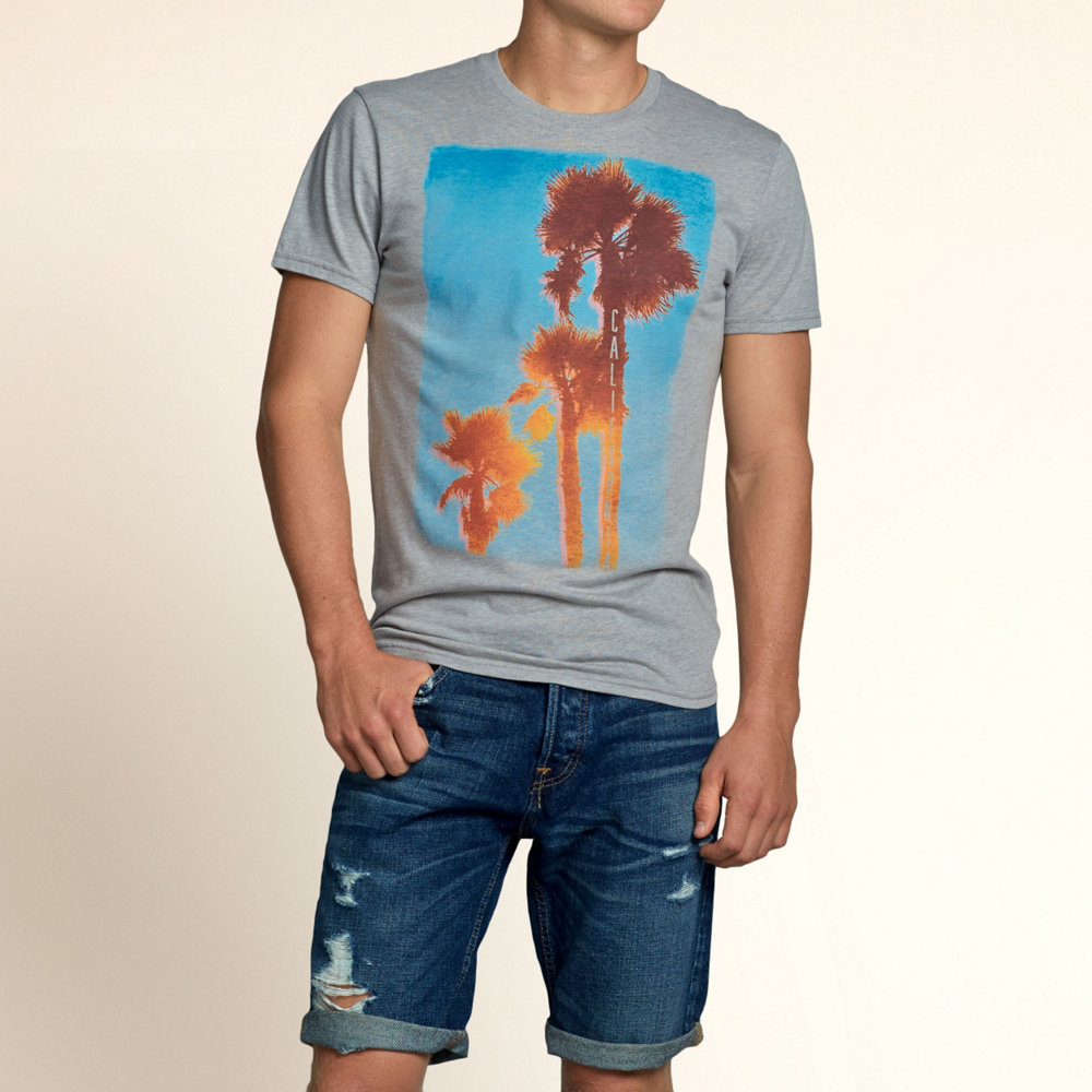 hype | Rakuten Global Market: Hollister T shirt mens graphic print ...