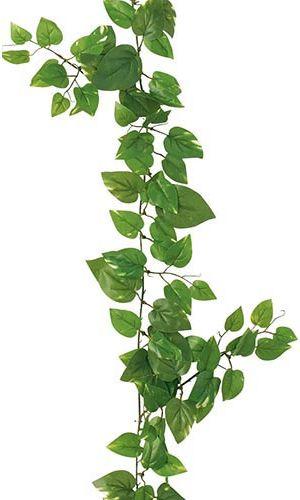全長180cm 葉径4~8cm 造花 未使用品 ポトスガーランド 216 ワイヤー入り LEGA7656 ストア フェイクグリーン 壁掛け 観葉植物 インテリア おしゃれ 店内装飾