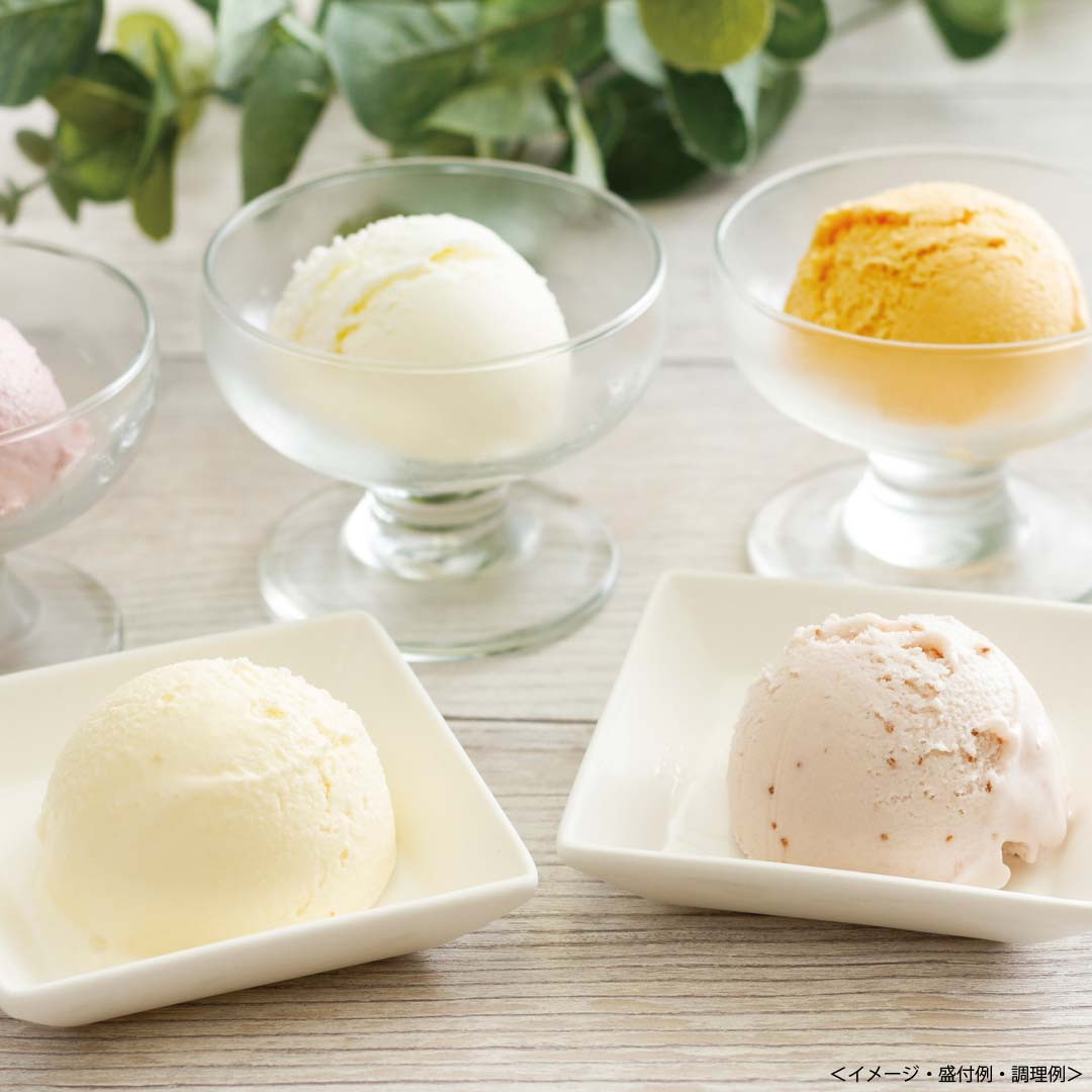 格安 乳蔵 北海道アイスクリーム 送料込 レビューを書けば送料当店負担 熨斗 ギフト のし対応可 贈答