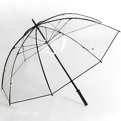 雨傘テラボゼン 特大サイズ 大きいビニール傘 ホワイトローズ 日本製【送料無料】【SP】