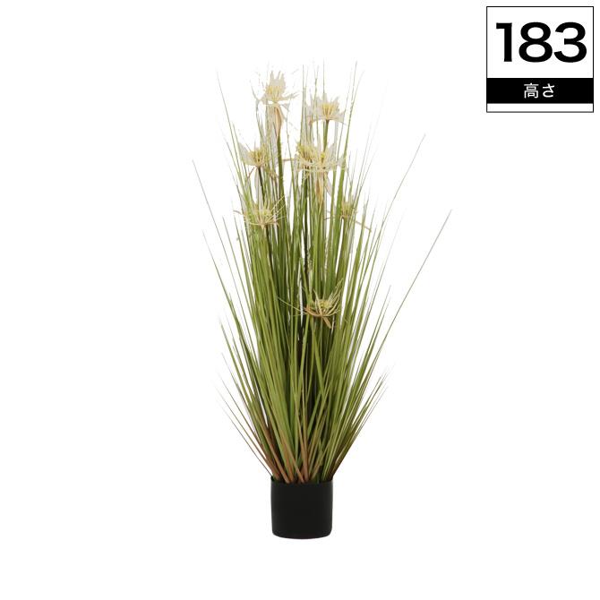 光触媒加工付き人工観葉植物 サニーグラス 高さ183cm消臭 グリーン 観葉植物 人工 植物 造花 鉢 土・水やり不要 光触媒加工で抗菌・防臭・防汚機能付おしゃれなインテリアグリーン 送料無料