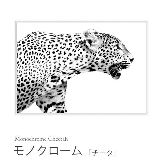 モノクローム 「チータ」 Monochrome Cheetah HPDN1090 チーター 白黒 モノクロ 壁掛け インテリアパネル アートポスター アニマル柄 絵画 額縁 フレーム 作品 ウォールパネル 壁飾り スタイリッシュ おしゃれ スパイス SPICE