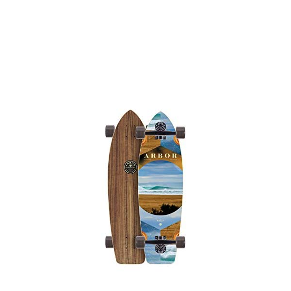 Arbor アーバー スケートボード スケボー コンプリート 海外モデル アメリカ直輸入 海外正規品 Arbor Rally Photo Complete Skateboard, Nocturnal, 30.50