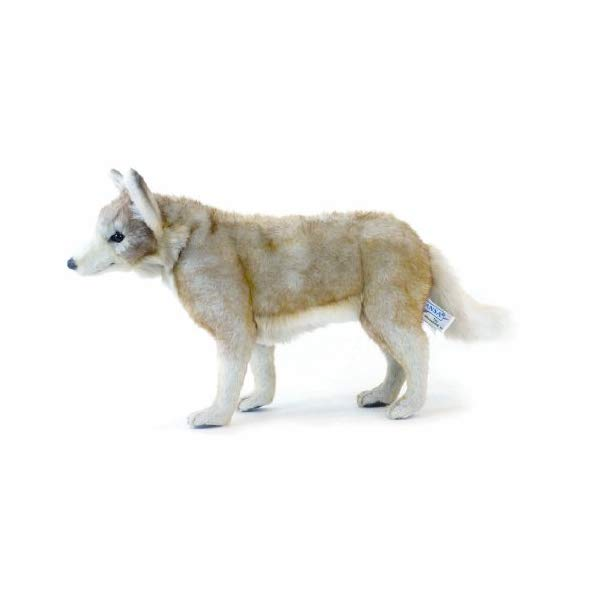 大特価放出! ハンサ コヨーテ ぬいぐるみ Hansa Young Coyote Coyote ぬいぐるみ コヨーテ Plush, ルイーズガレージ@アメリカン雑貨:ebbeb5a6 --- blacktieclassic.com.au
