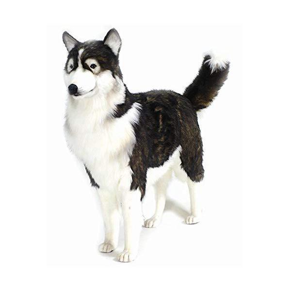 ハンサ シベリアンハスキー ぬいぐるみ Hansa Husky Dog Plush, Life Size