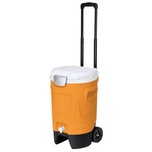新しく着き イグルー 5 19リットル ドリンククーラー Beverage Igloo Sport Igloo Roller Beverage Cooler (Orange, 5 Gallon), カワサキムラ:08122f37 --- supercanaltv.zonalivresh.dominiotemporario.com