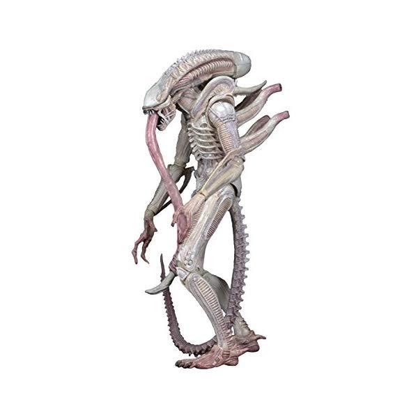 エイリアン プレデター アクション フィギュア 人形 ネカ NECA Aliens 7