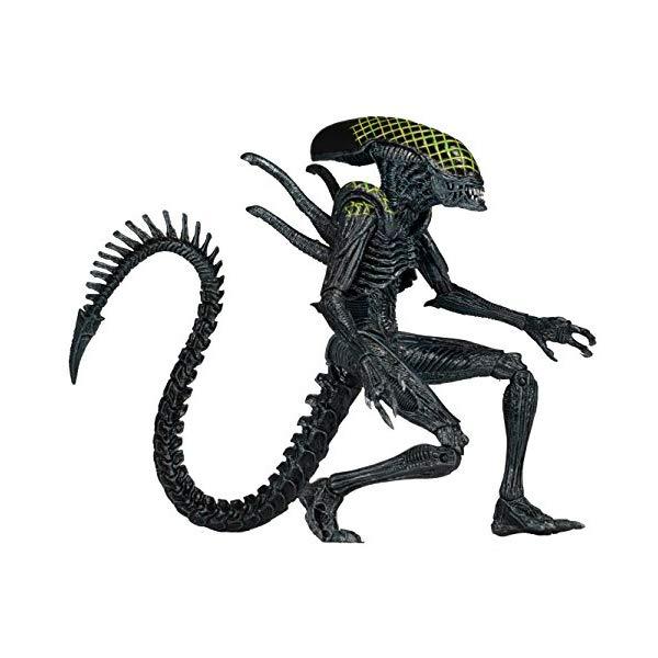 エイリアン アクション フィギュア 人形 ネカ NECA Aliens Series 7 AvP Grid Action Figure (7