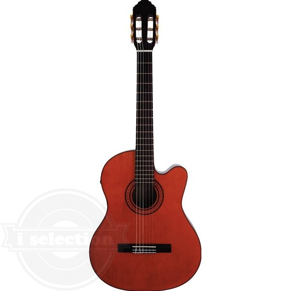 【Eko CE-100 EQ Acoustic Classical Guitar アコースティックギター クラシックギター fishimanチューナー付き】