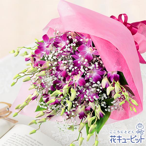最安値挑戦 ピンクのデンファレを使った花束は女性に大人気 ギフト 誕生日 プレゼント お祝い 記念日 祖父祖母 彼氏彼女 女性男性 新色追加して再販 友人知人 夫婦 花キューピットのピンクデンファレの花束ya09-511612