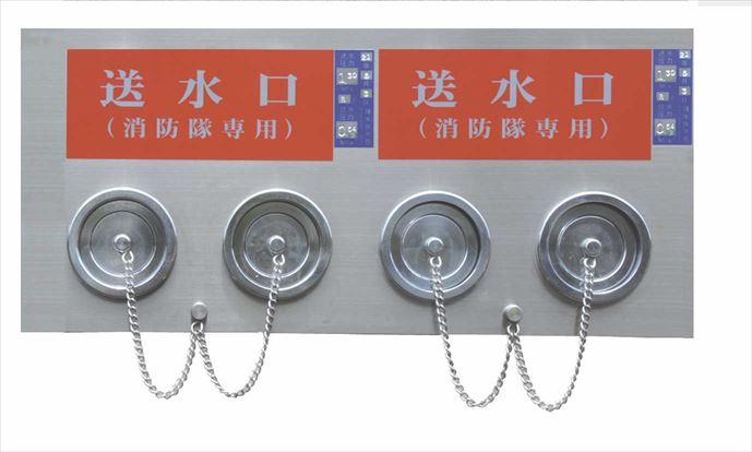 100A X 65A X 65A 埋込型双口送水口 (差込式・2連) DS2-34