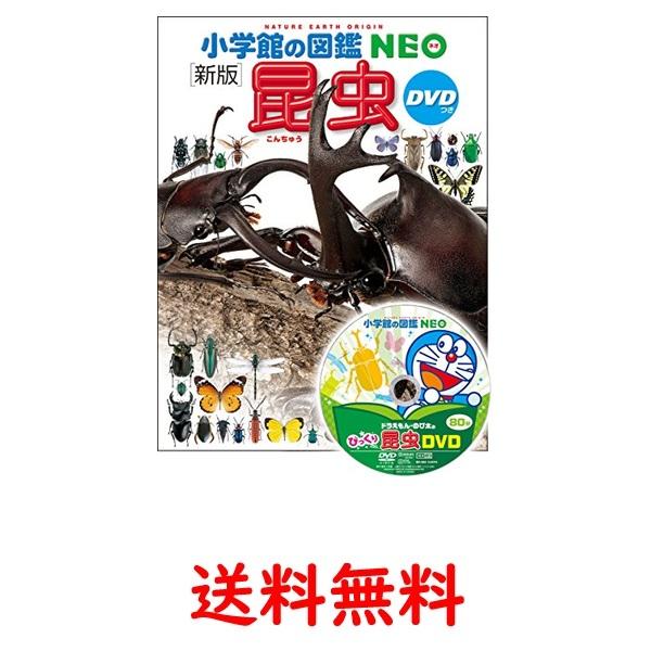 DVD付 新版 人気ショップが最安値挑戦 市場 昆虫 NEO 小学館の図鑑