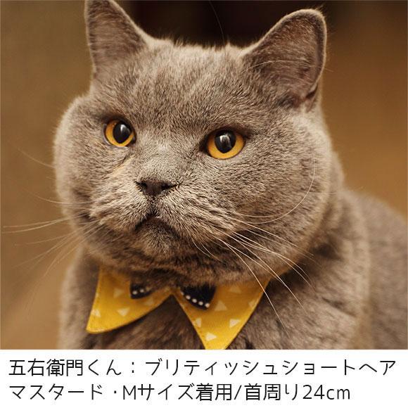 【 猫 首輪 安全 】iCat デザインカラー トライアングル アイキャット メール便OK【 あす楽 翌日配送 】【 布製 カラー 軽量 セーフティ 簡単 猫首輪 猫の首輪 猫用首輪 icat i dog 楽天 】