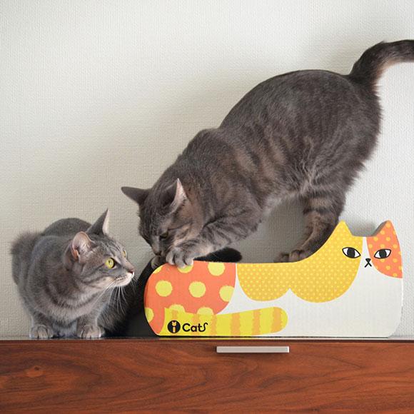 研磨iCat眼睛猫原始物指甲,并且是豐富多彩Dotto