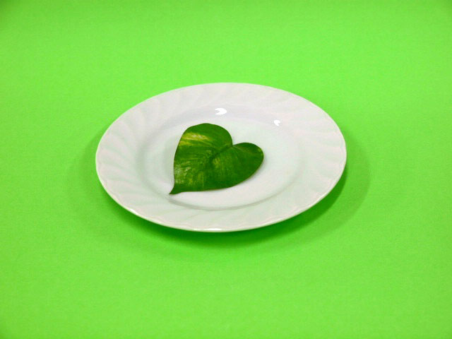 人気の白いお皿 永遠の定番モデル ホワイトキャロルパン皿1枚 新作
