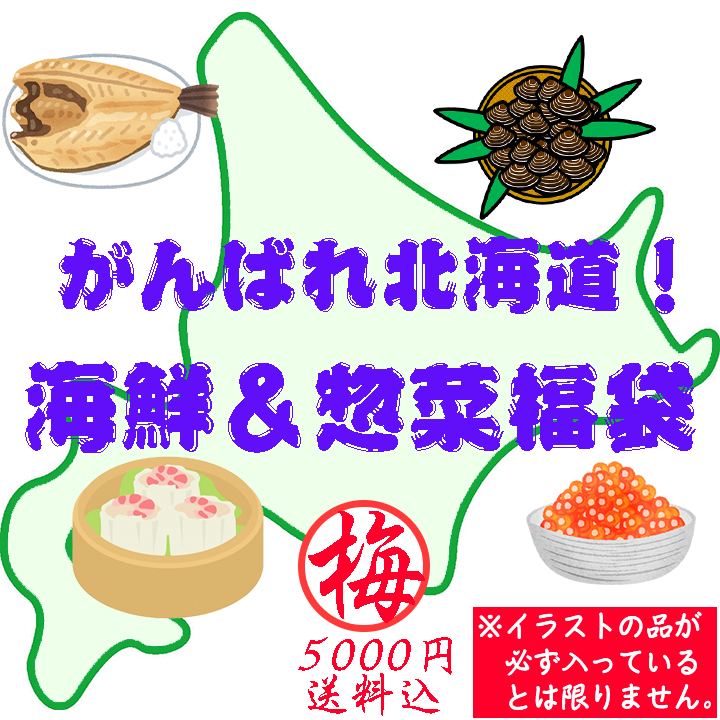 物産 展 福袋 北海道 cdn.snowboardermag.com: 【北海道産詰め合わせ2021年福袋】海鮮