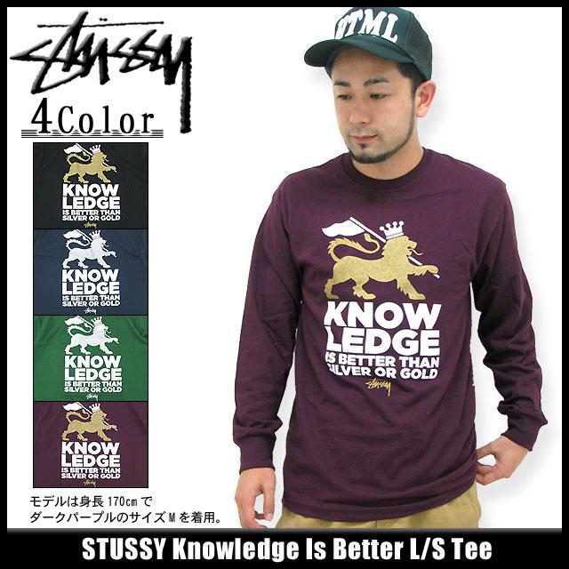 Stussy STUSSY 知识是更好 T 袖衫 (stussy tee t 恤衫 t 恤上衣很长很长茶罗恩 t 对于男性,男性 1993092 Stussy stussy Stussy Steacy) 冰提起冰原